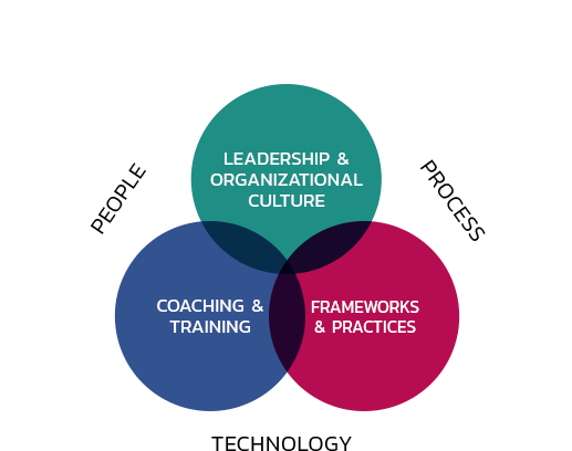 Leadership & Organizational Culture; Coaching & Training; Framework & Practices